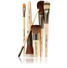 Mineral Make Up Cosmetics - make up brushes